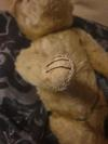paw of Early 40's teddy bear.