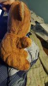 yellow teddy bear side view