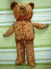 70 year old American teddy