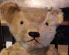 teddy bear face