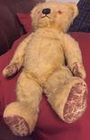 Musical teddy Bear feet