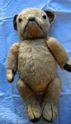 Old teddy bear in New Zealand