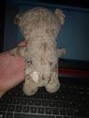 Old and tatty teddy bear