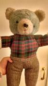 Teddy Bear with tartan shirt