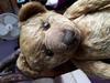 Teddy No Name
