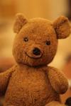 cute smiling teddy bear
