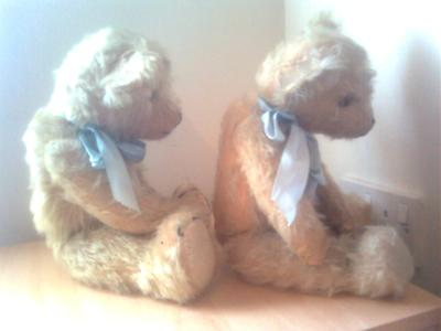 Side view of two old teddy bears
