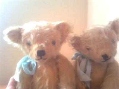 two cute old teddy bears