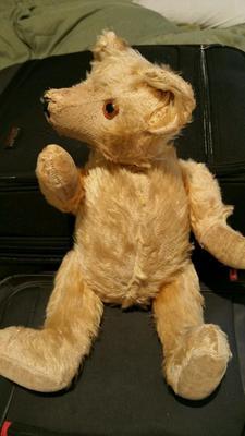 pre 1960 teddy