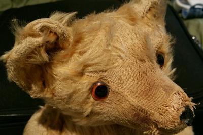 pre 1960 teddy face