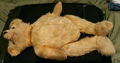 pre 1960 teddy full body