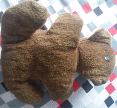 Here is the precious teddy bear!