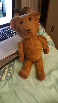 who is this bear?