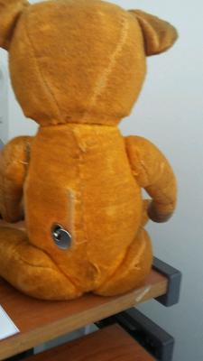 Back view Musical Teddy Bear