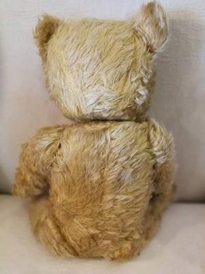 back view of teddy bear
