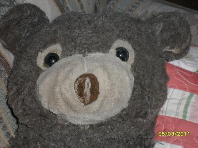 Black teddy bear face