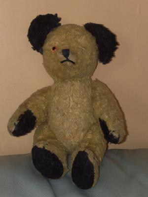 Is this a Chiltern Sooty bear?