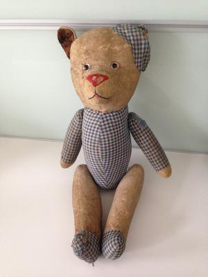 A bear with a cap