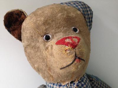 Felp nosed bear