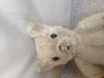 White teddy bear head