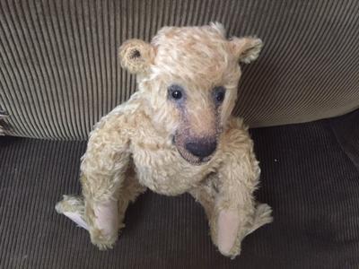 light coloured teddy bear