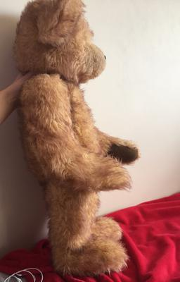 Standing teddy bear