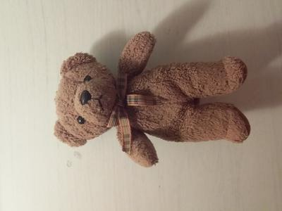 Front of teddy bear