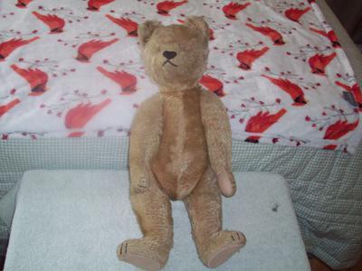 dive claw teddy bear