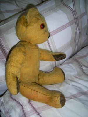 Little Ted side view