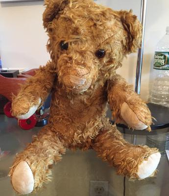 Scruffy Teddy Bear