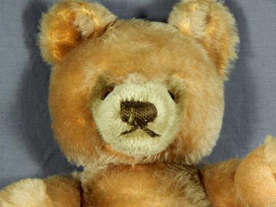 face of teddy bear