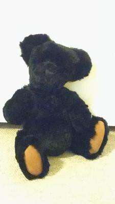 This is the Teddy bear
