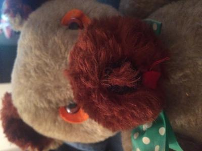 Teddy Bear With brown Nose