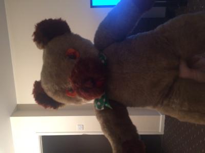 Cream and Brown Teddy Bear