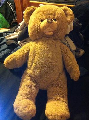 Barry The Bear