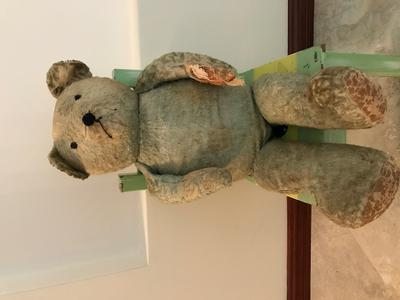Blue Bear 75cm Long