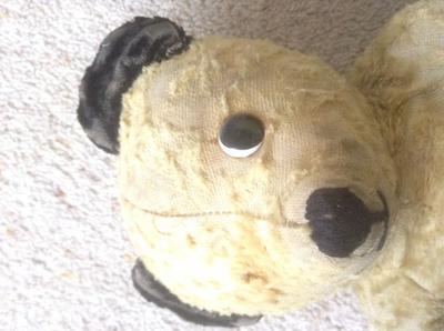 yellow teddy bear face