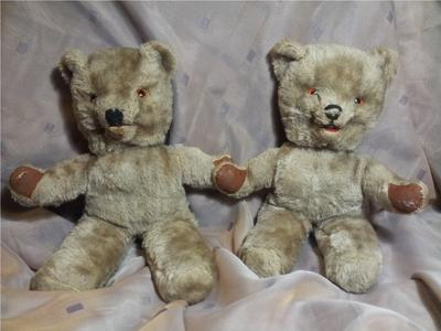 Brother and Sister Bears