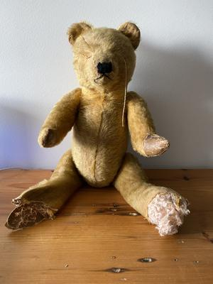 Australian teddy Bear