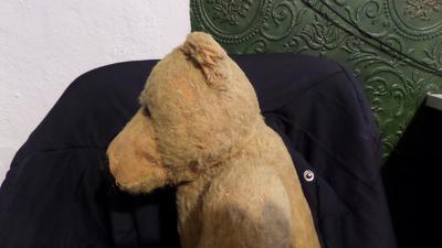 side view of teddy bear