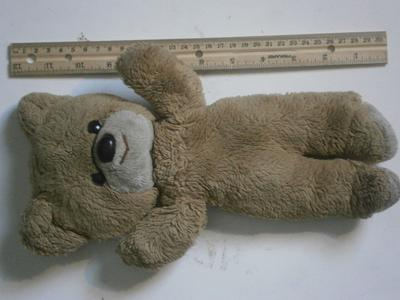 Childhood Teddy