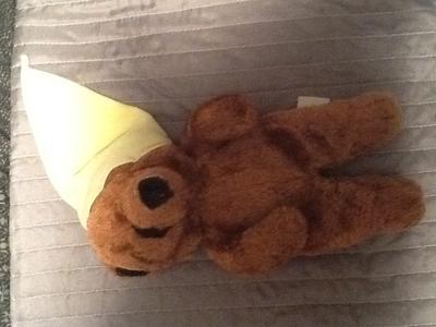 Meet Bear