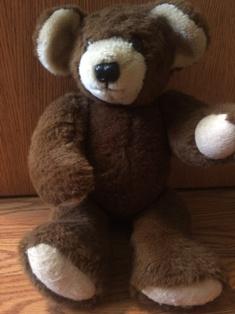 Teddy Bear Front