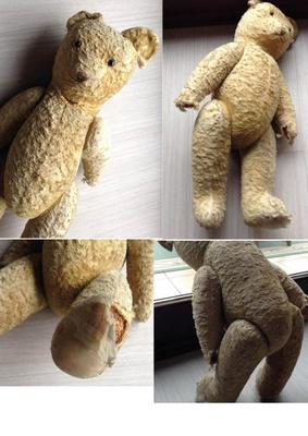 Belgian Teddy Bear