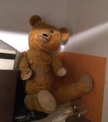 Grandma's Teddy Bear