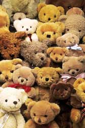 Collecting Teddy Bears