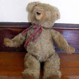 Teddy Bear Identification and Valuation Tips