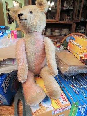harlequin bear