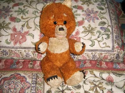 Unusual Teddy Bear