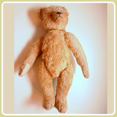 Flying Teddy